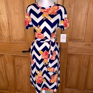 NWT S LLR Pink Roses & Chevron Striped Marley